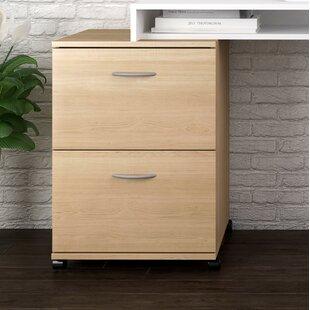 Symple Stuff 2 Drawer Mobile Filing Cabinet
