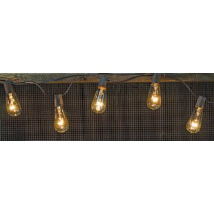 Hoang 10 ft. 10-Light Standard String Light by The Holiday Aisle