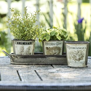 Outdoor herb garden planters wayfair vintage garden herb 3 piece pot planter set workwithnaturefo