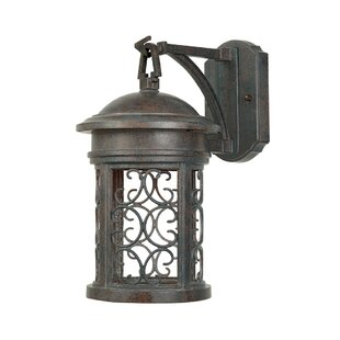 Order Cole 1-Light Outdoor Wall Lantern By Darby Home Co