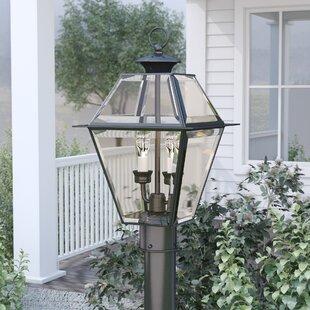 Orchard Lane Outdoor 2-Light Lantern Head by Three Posts