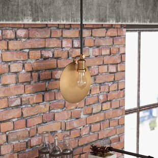 Kaaterskill 1-Light Geometric Pendant by Trent Austin Design