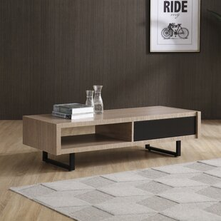 Waterville Living Room Coffee Table with Storage by Brayden Studio