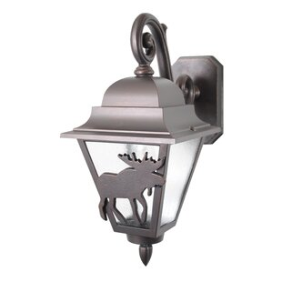 Alcott Hill Penfield 1-Light Outdoor Wall Lantern