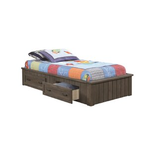Seger Platform Bed with Drawers by Harriet Bee