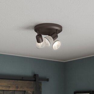 Wrought Studio Raftery 3-Light Directional & Spotlight