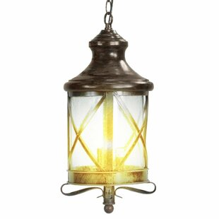 Lux 3-Light Outdoor Hanging Lantern By eTopLighting Outdoor Lighting