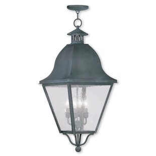 Goodhue 4-Light Lantern Pendant by Alcott..