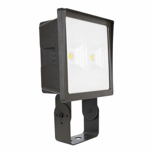 Elco Lighting 2-Light LED Flood Light