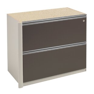 Latitude Run Karla 2-Drawer Oversized Pedestal File