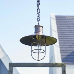 Nathaniel 1 Light Outdoor Hanging Lantern By Longshore Tides
