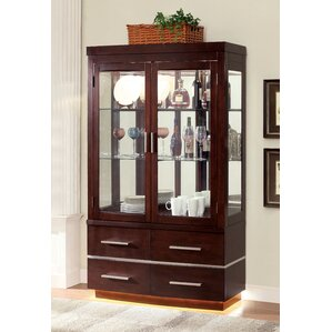 Fallsburg Lighted Curio Cabinet by Red Barrel Studio