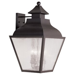 Alcott Hill Gahagan 4-Light Outdoor Wall Lantern