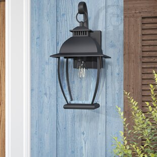 Wilsonville 1-Light Outdoor Wall Lantern