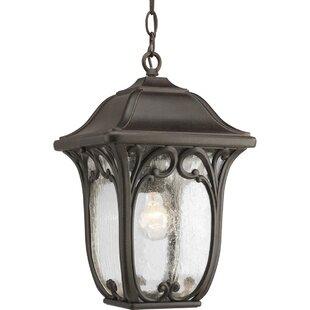 Alcott Hill Triplehorn 1-Light Hanging Seeded Lantern