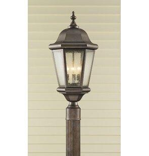 Hereford Outdoor 3-Light Lantern Head
