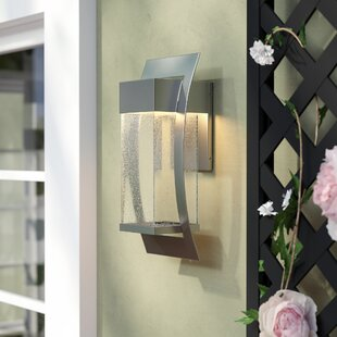 Charlton Home Oakhill Outdoor Wall Lantern