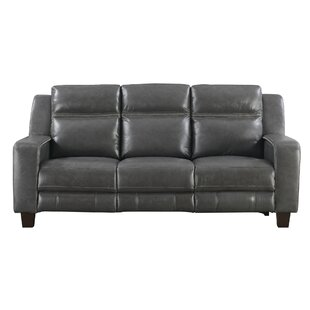 Novice Reclining Sofa by Brayd..