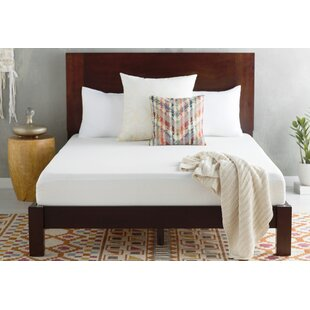 8 Plush Memory Foam Mattress By Alwyn Home