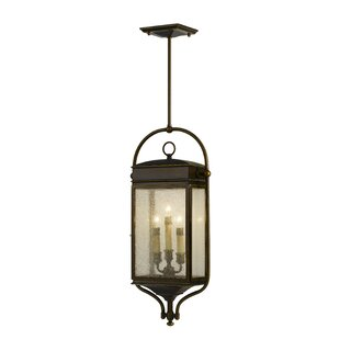 Darby Home Co Barrie 3-Light Outdoor Hanging Lantern
