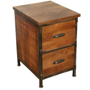 Yerby 2 Drawer Vertical Filing Cabinet