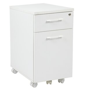 Latitude Run Sharniece 2 Drawer Mobile File