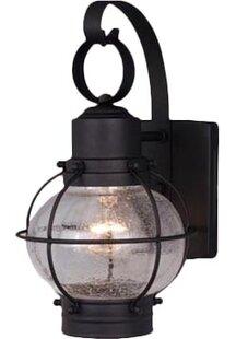 Cosgrove 1-Light Outdoor Wall Lantern by Beachcrest Home