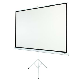 White 58 x 77 Portable Tripod Projector Screen