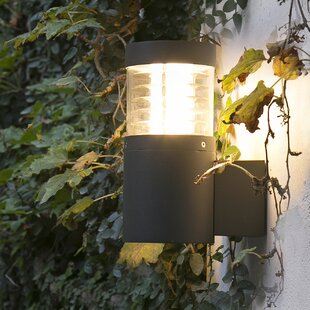 Mullings 1 Light Wall Light By Sol 72 Outdoor