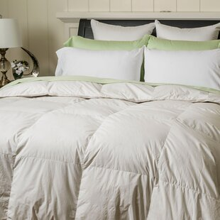 All Season Down Comforter