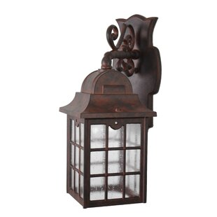 Darby Home Co Archard 1-Light Outdoor Wall Lantern