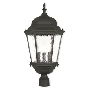 Busse 3-Light Lantern Head by ..