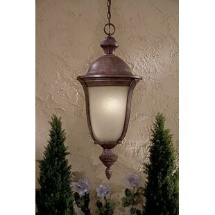 Order Ardmore 5-Light Outdoor Hanging Lantern By Great Outdoors by Minka