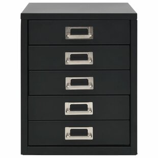 Kaye 5 Drawer Filing Cabinet By Bloomsbury Market