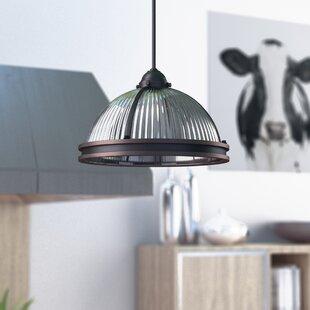 Best Price Palisade 2-Light Dome Pendant By Trent Austin Design