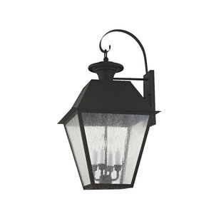 Cynda 4-Light Outdoor Wall Lantern