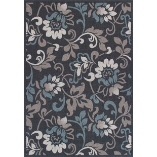 Eoin Weather-Proof Gray Indoor/Outdoor Area Rug
