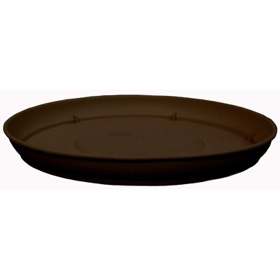 Marina Saucer (Set of 4) Myers/Akro Mills Size: 1.85'' H x 17.7'' W x 17.7 D, Color: Chocolate