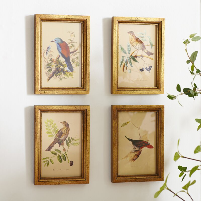 Birch Lane™ Avian Framed Prints & Reviews | Birch Lane