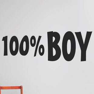 Wall Decals For Boys Room Wayfair