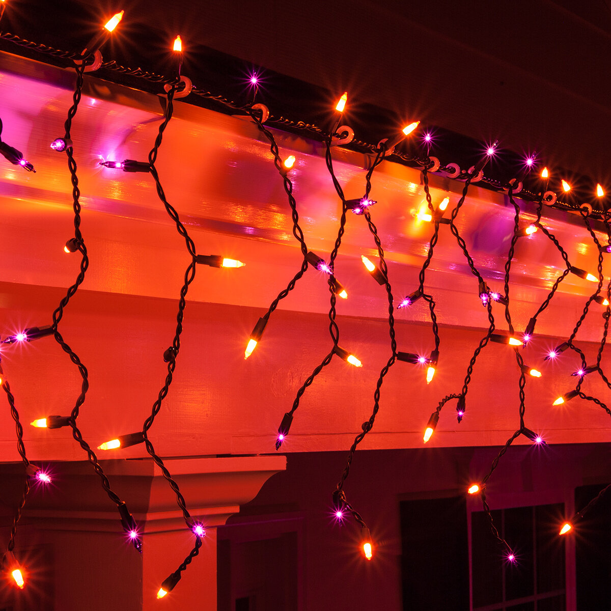 UL Listed Holiday Essentials Orange Halloween Mini Lights with Black Wire Set of 50 Indoor // Outdoor Use