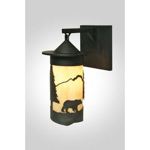 Bear 1-Light Outdoor Wall Lantern by Stee..