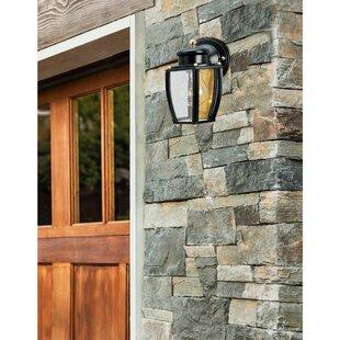 Breakwater Bay Neary 1-Light Outdoor Wall Lantern