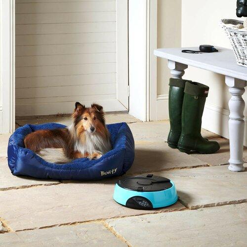 Hundebett Bacup   Garten > Tiermöbel > Hundekörbe-Hundebetten   Blau   Archie & Oscar