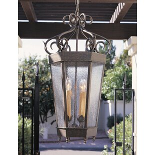 Regency 4-Light Outdoor Hanging Lantern By 2nd Ave Design Outdoor Lighting