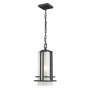 Weitzel 1-Light Outdoor Pendant