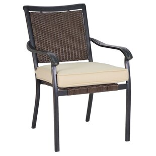 Shreya Woven Stacking Patio Dining Chair with Cushion (Set of 2)