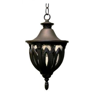 Phillipstown 4-Light Outdoor Pendant