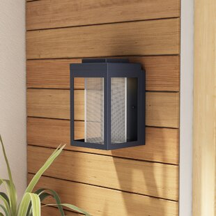 Latitude Run Cavazos 1-Light Outdoor Flush Mount