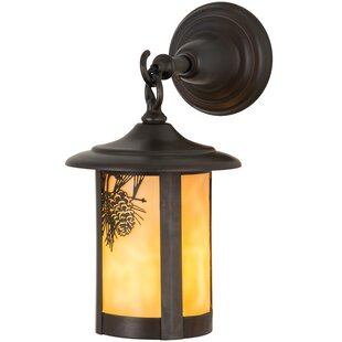 Price comparison Wyona Winter Pine 1-Light Outdoor Wall Lantern By Loon Peak
